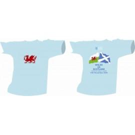 TACC - Wales 2009
